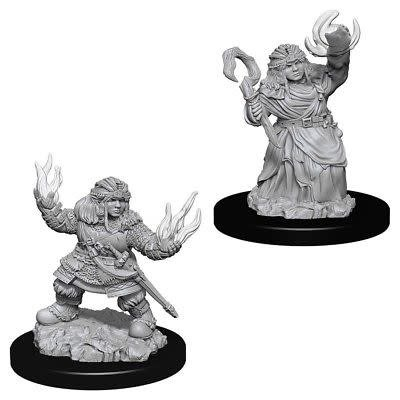 Female Dwarf Summoner PF Unpainted Mini