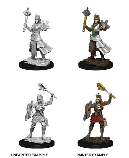 D&D Unpainted Minis - Female Human Cleric