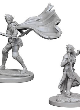 PF Unpainted Minis: Elf Female Rogue