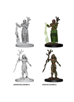 D&D Unpainted Minis: Human Female Druid