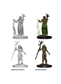 D&D Unpainted Minis: Human Female Druid