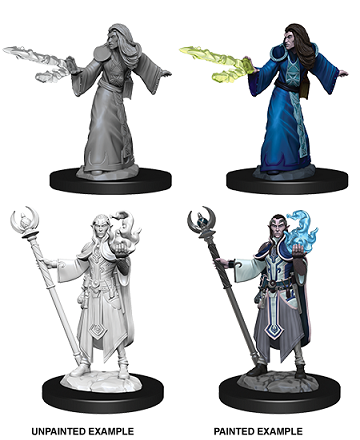 DND UNPAINTED MINIS WV9 MALE ELF WIZARD