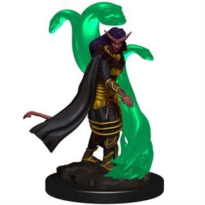 Painted: Tiefling Female Sorcerer Prenium