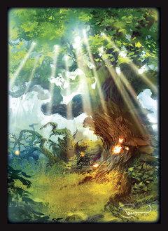 Sleeves Velinov Forest