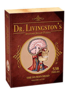 Human Head - Dr. Livingston's Anatomy Puzzle (538 pc)