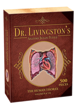 Human Thorax - Dr. Livingston's Anatomy Puzzle (500 pc)
