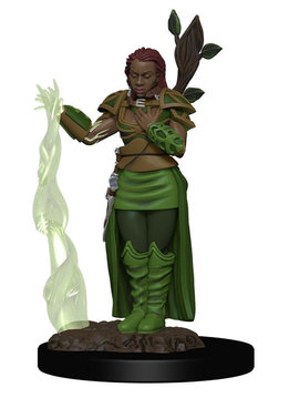 D&D Premium Figures: Female Human Druid