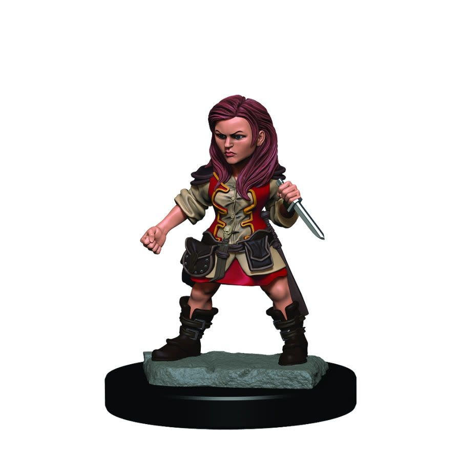 Female Halfling Rogue - D&D Icons of the Realm Premium Painted Figure