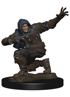 PF Battles Premium Painted Minis: Human Rogue Male