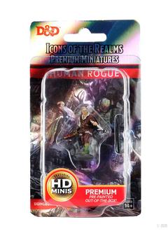 D&D Premium Figures: Human Male Rogue