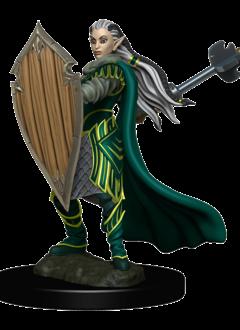 D&D Premium Figures: Elf Female Paladin