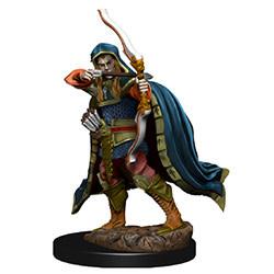 D&D Icons Elf Rogue Male Premium