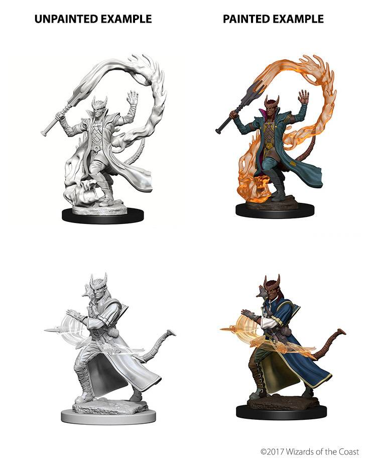 DND Unpainted Minis: Tiefling Male Sorcerer
