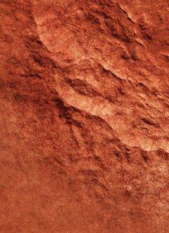 FLG Mats Mars 1 - 4x6