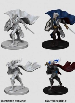 PF Unpainted Minis: Elf Female Paladin