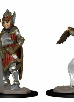 Girl Fighter and Falcon Wardlings