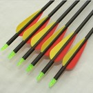"SR Archery Made Arrows Sr Carbon 30"" 3"" Vanes"