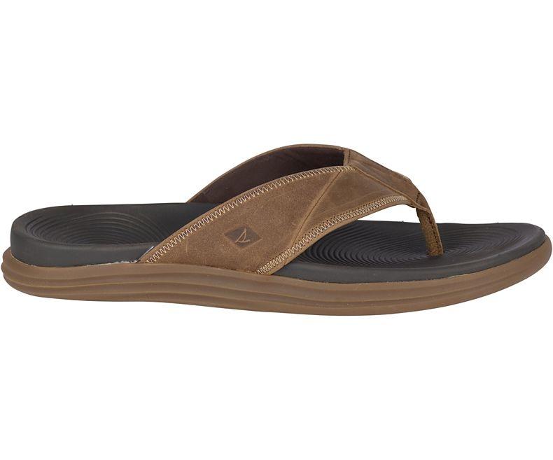 SPERRY Sperry Regatta Flip Flop  - Brown/Tan (Men's)