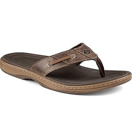 SPERRY SPERRY BAITFISH THONG BROWN (MEN'S)
