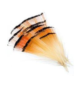 Wapsi Wapsi- Golden Pheasant Tippet Natural - Large