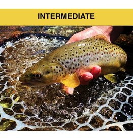Dry Fly Tying Class - April 7, 2019 - 11am