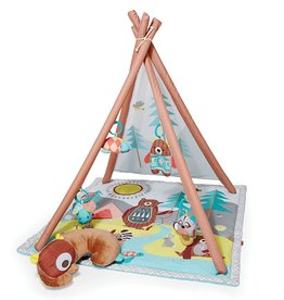 baby store in Canada - SKIP HOP Skip Hop Activity Gym Camping Cubs