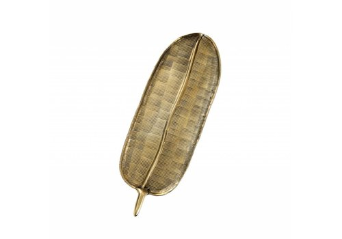 Golden Fern Tray S