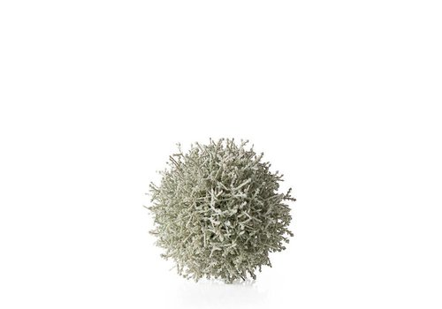 "White Sagebrush 5"" Ball"