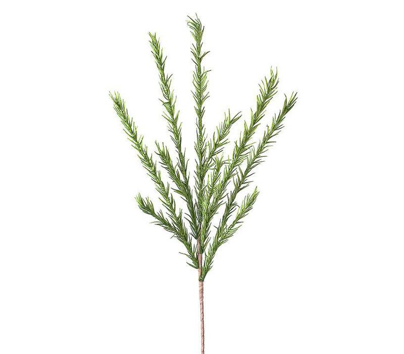 Desert Pine Stem Green