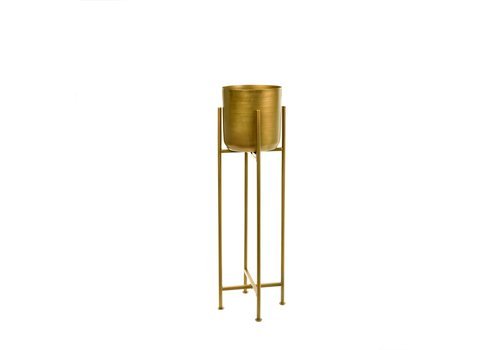 Sooke Plant Stand S Brass