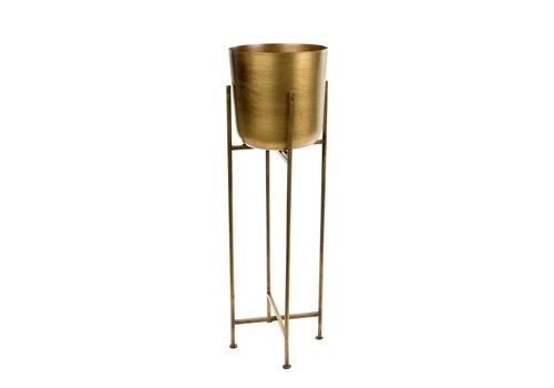 Sooke Plant Stand L Brass