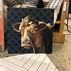 Preppy Cow 20 x 20