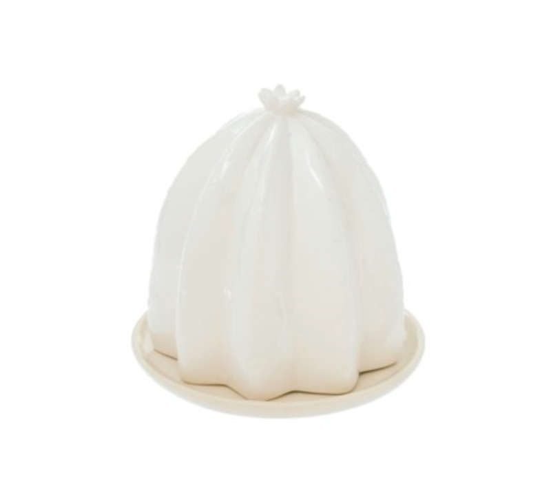 Cactus Butter Dish White
