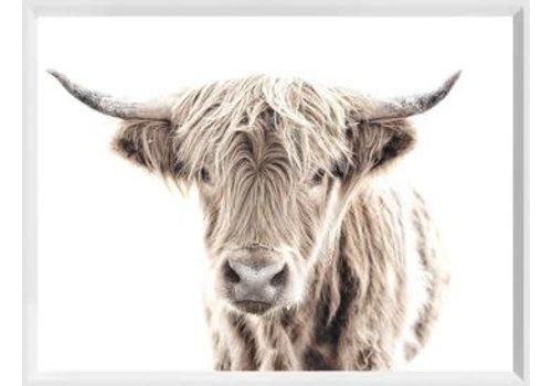 """Modern Farm Highland Cow 15x20"""""""