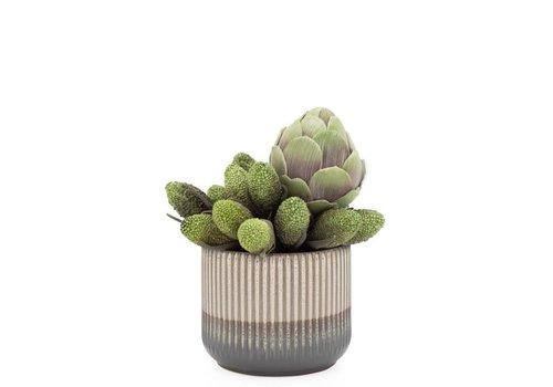 "Palma Glaze Ceramic Pot Planter  5.5"""