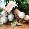French Green Clay Beauty Bomb
