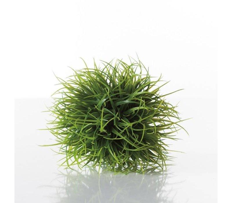 Grass Ball Small 4''