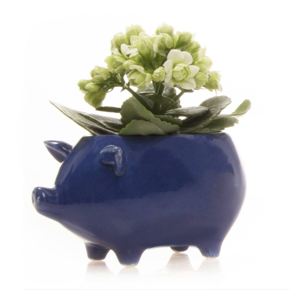 Piggie Vase, Chive