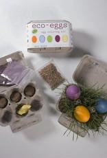 Egg Coloring Kit & Grass Growing Kit