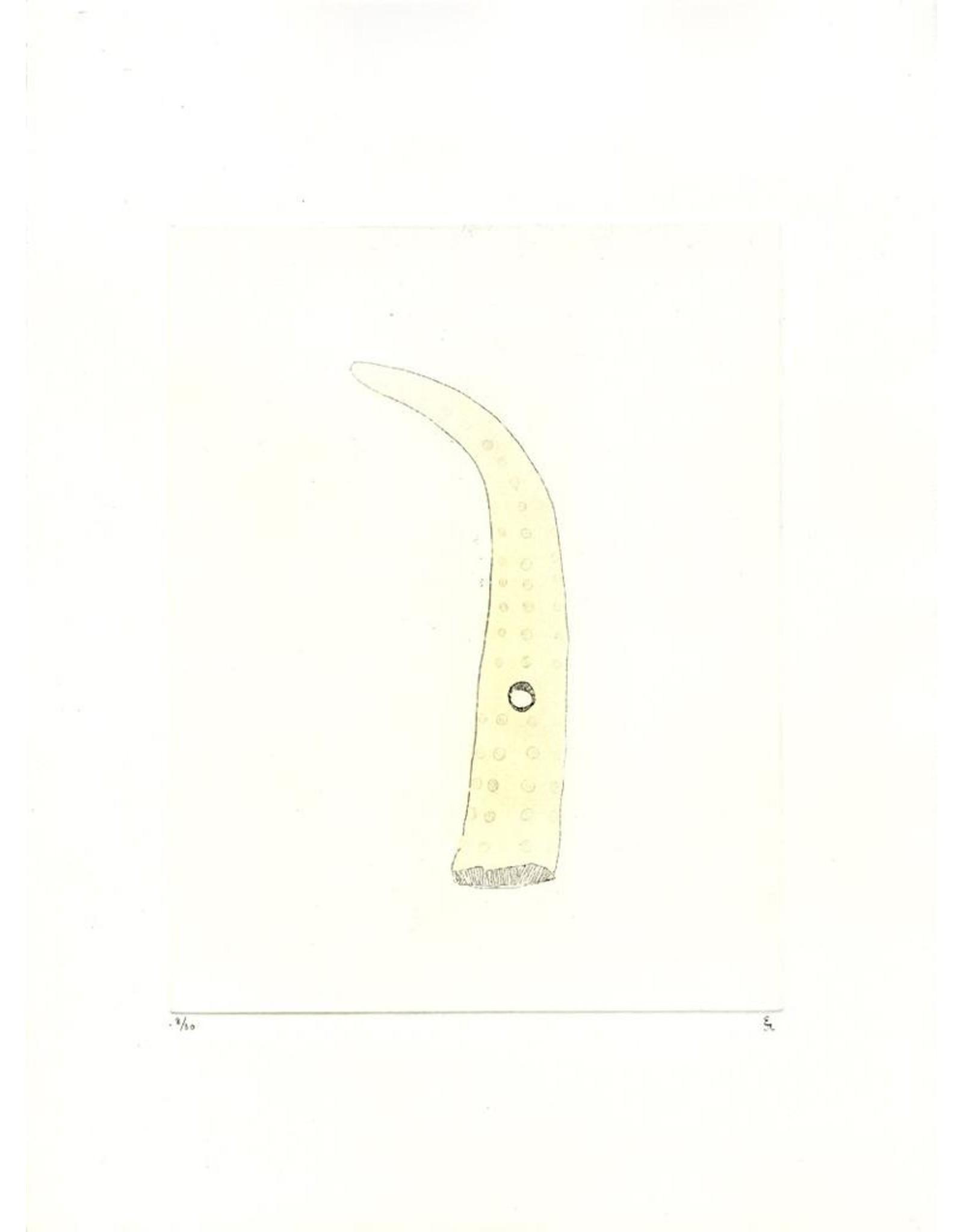 Josephson-Laidlaw, Erin Bone (from Some Specimens series)