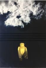 Benesiinaabandan, Scott Yellow Bird/osaawaa behnesii