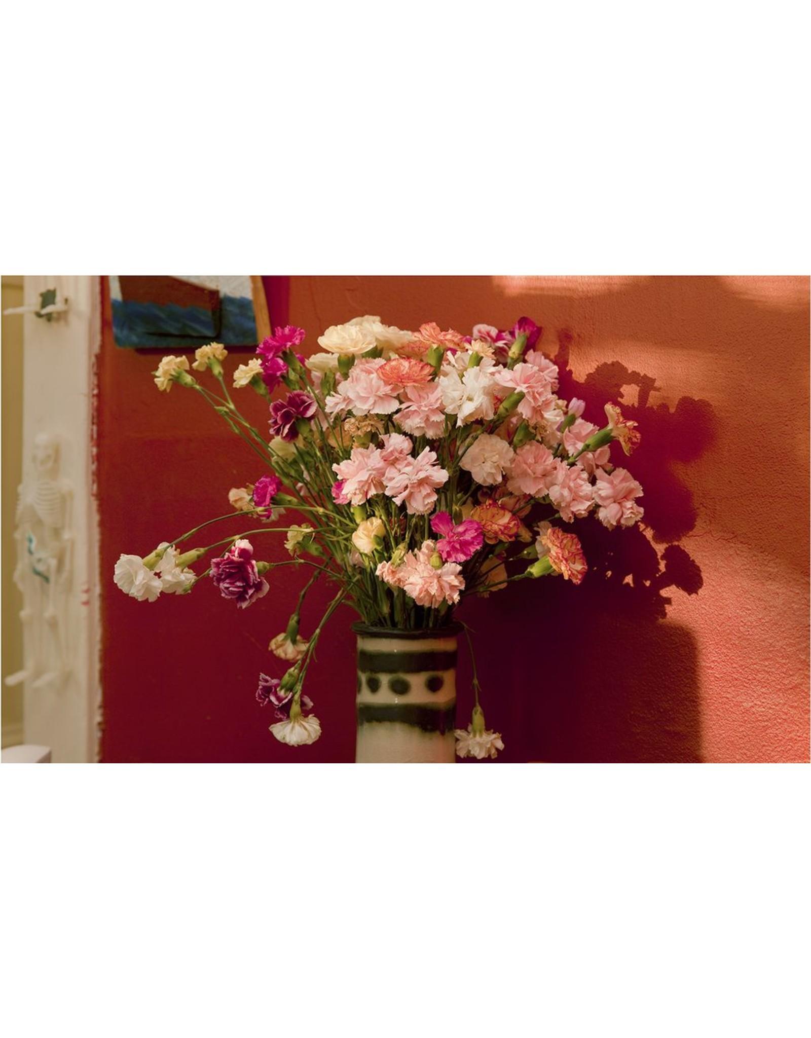 Glawson, Larry untitled (carnations skeleton), homebodies series