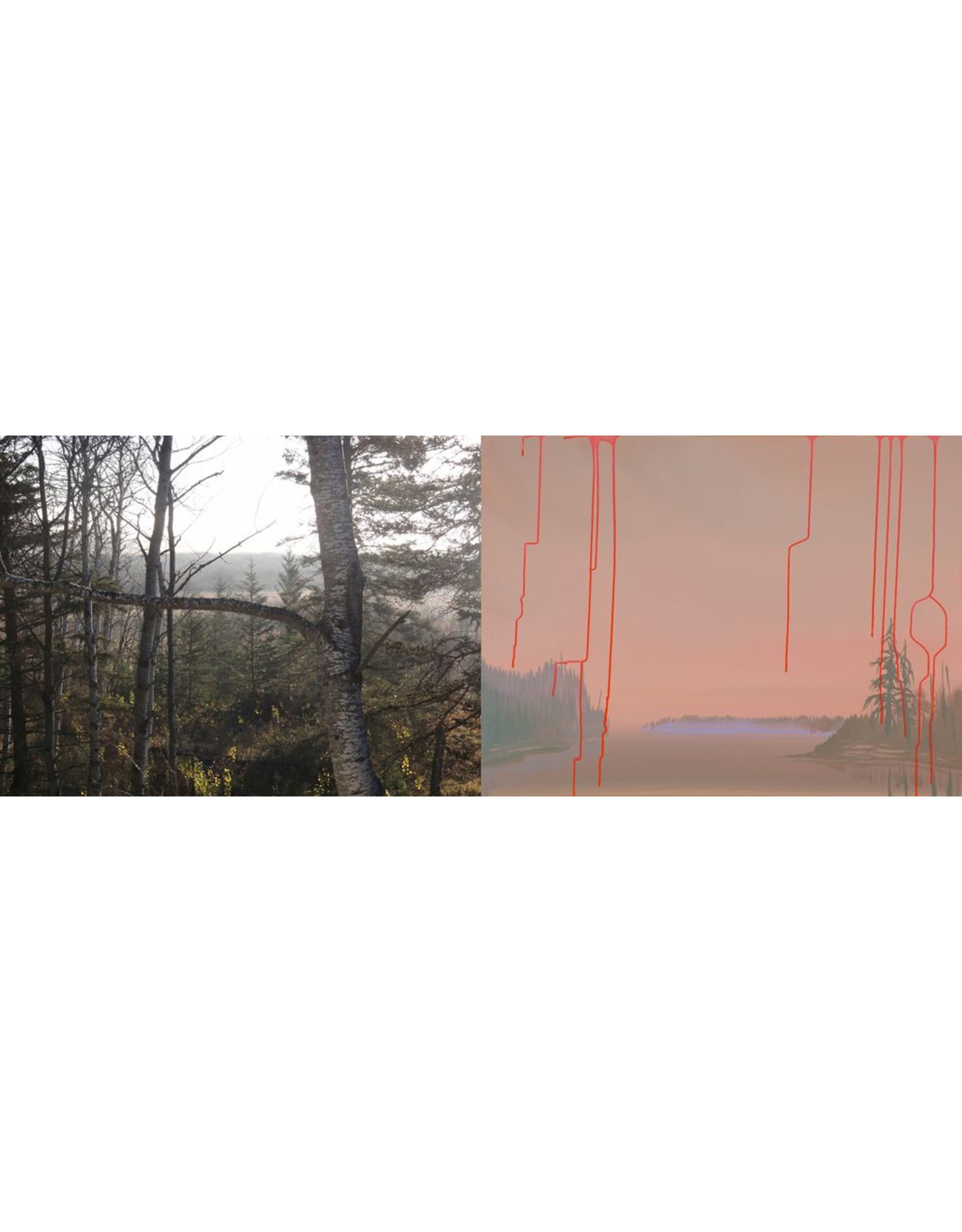 Koop, Wanda Interplay-Gravity
