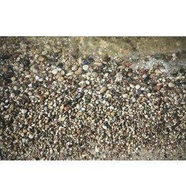 Pura, William Lake Winnipeg Shoreline-Pebbles, August 2009