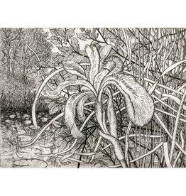 Simoens, Leo Wild Iris