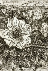Simoens, Leo Wild Roses