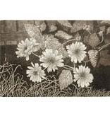 Simoens, Leo Wild Sunflowers