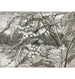 Simoens, Leo Wild Cranberry