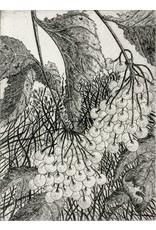 Simoens, Leo Cranberries