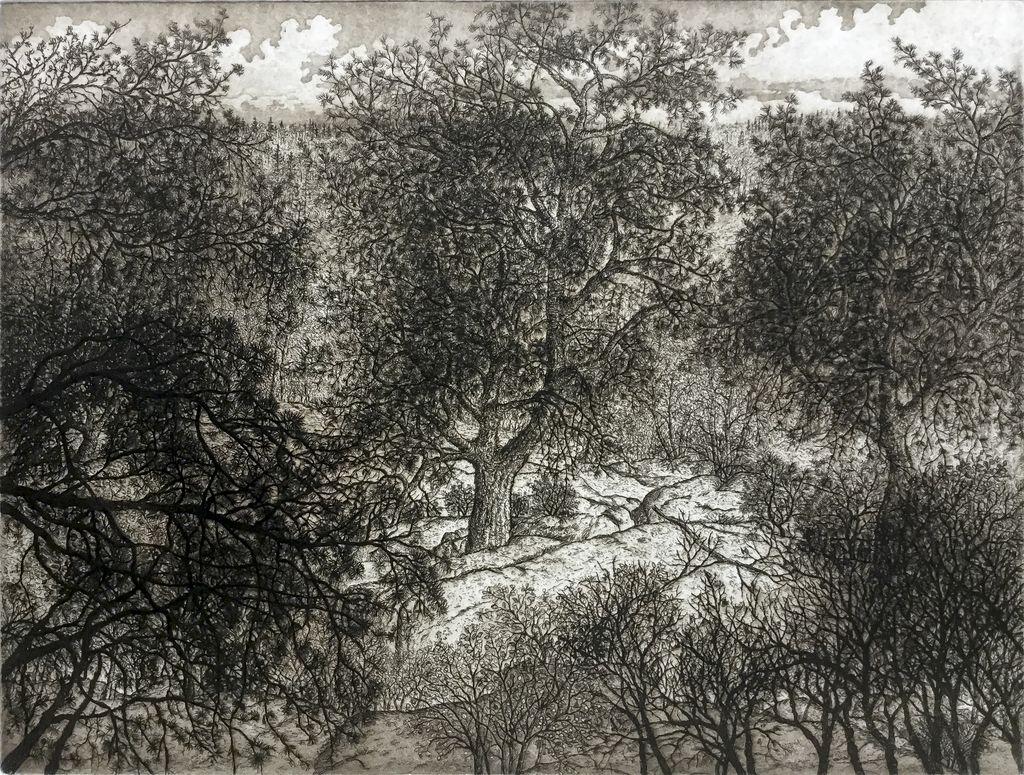 Simoens, Leo Jack Pine Ridge
